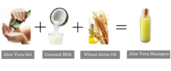 Wheat Germ/Aloe Vera/Coconut Milk - natural hair growth products