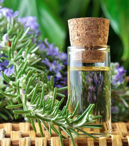 Rosemary Oil For Hair Growth