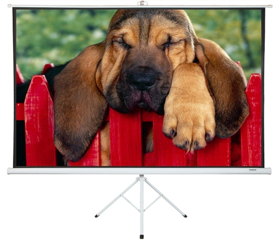 Portable Projector Screen with Stand 100