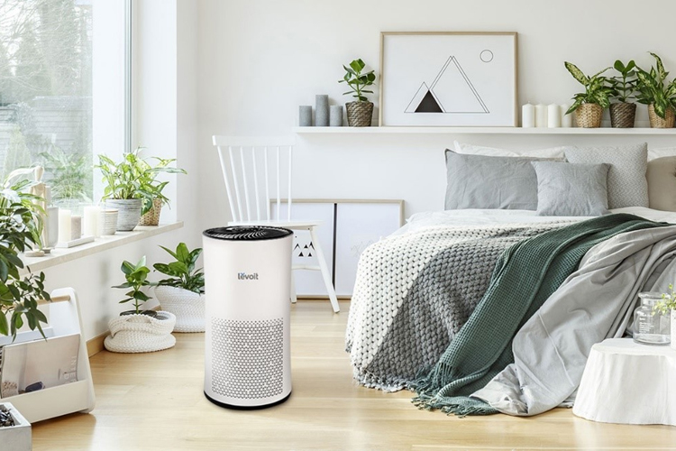 Top 10 Best Air purifier for Smoke 2019