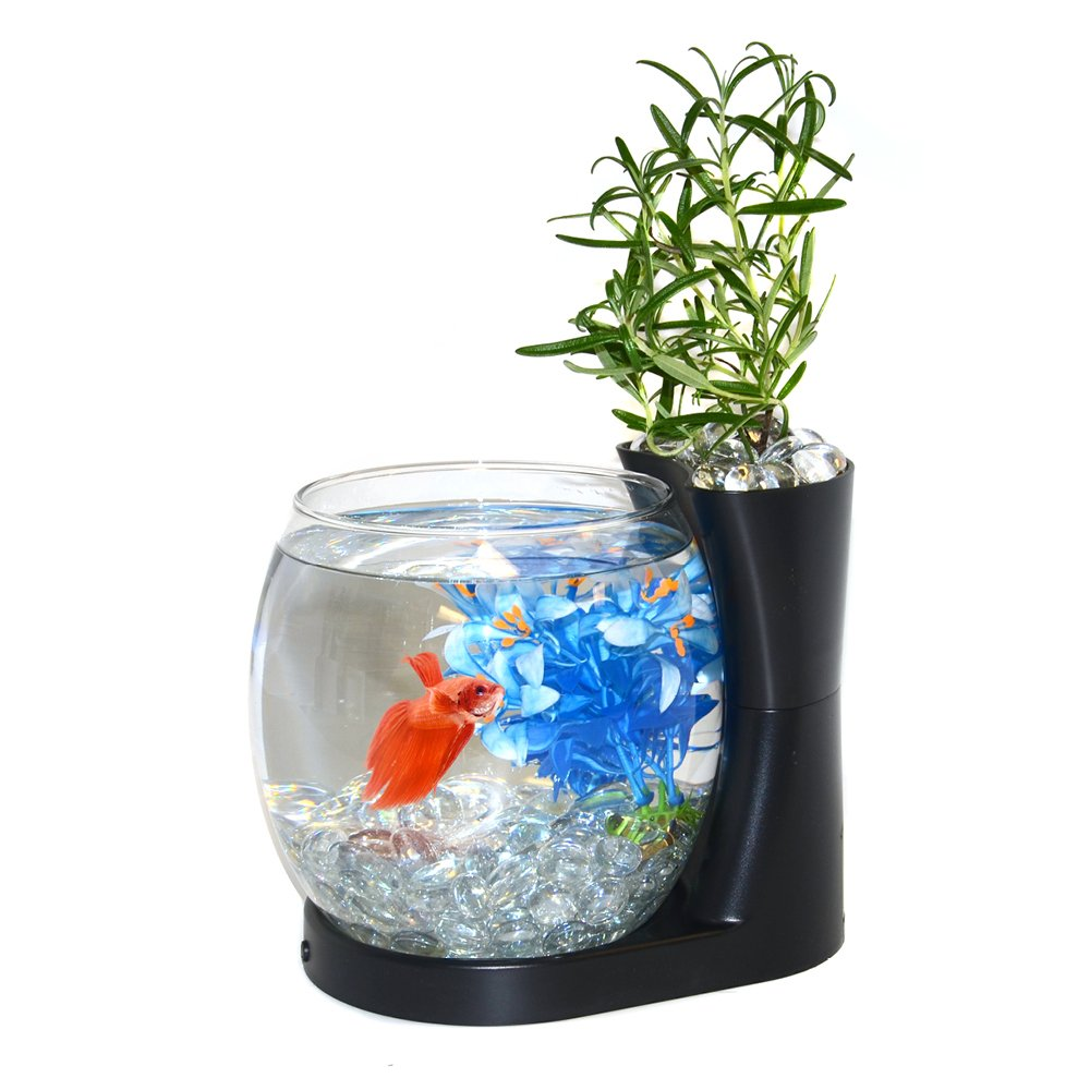 Elive Betta Fish Bowl with Planter​​