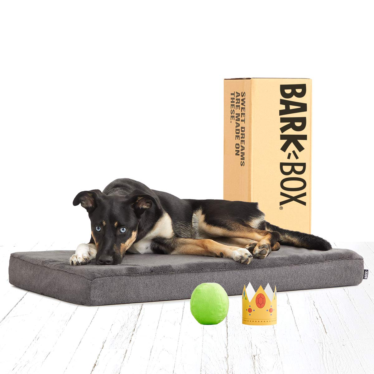 BarkBox Memory Foam Dog Bed