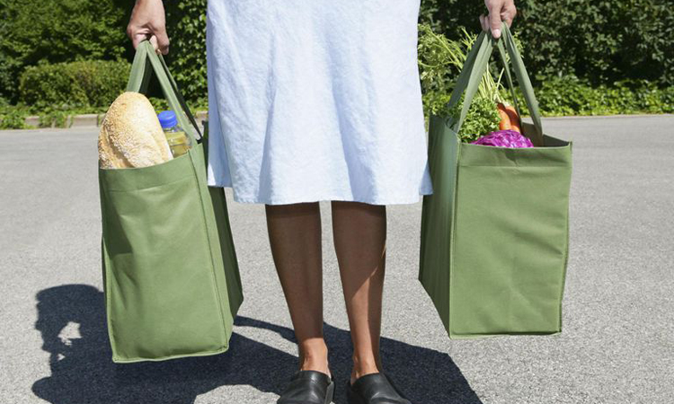 shopping bag for woman