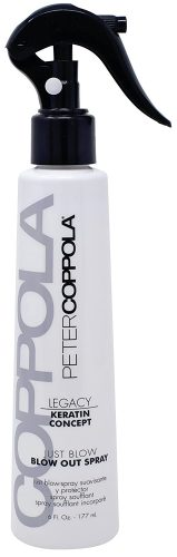 Peter Coppola Keratin Concept Just Blow – Blow Dry Spray – 6 oz – Heat Protectant Spray for Hair – Reduces Blow Dry Time, Smoothes...